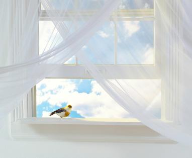 Billiga gardiner är oftast tillverkade av enfärgat bomullstyg